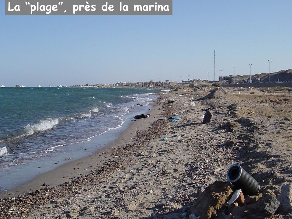 La plage, près de la marina