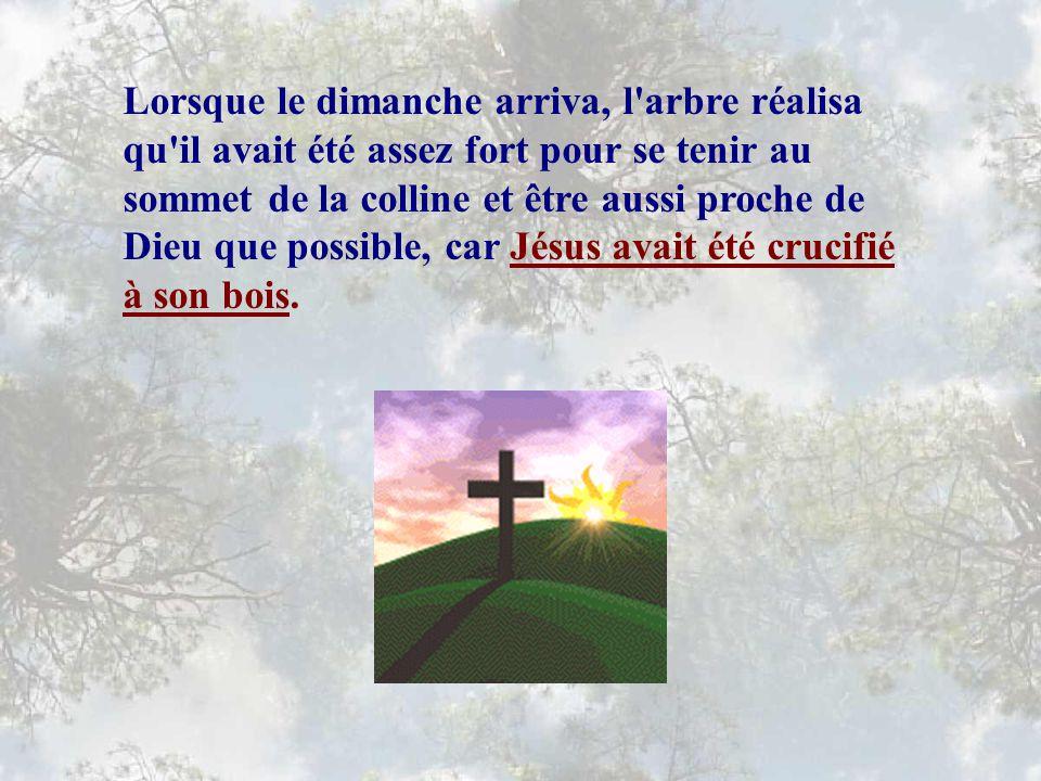 Cet homme fut cloué sur les pièces de bois élevées en croix, et mourut au sommet de la colline.