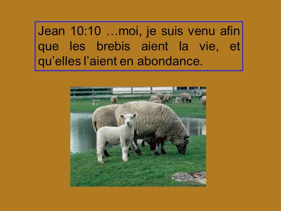 Jean 10:10 …moi, je suis venu afin que les brebis aient la vie, et quelles laient en abondance.