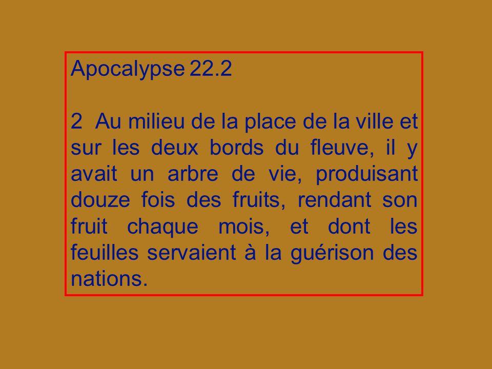 Apocalypse 22.2 2 Au milieu de la place de la ville et sur les deux bords du fleuve, il y avait un arbre de vie, produisant douze fois des fruits, rendant son fruit chaque mois, et dont les feuilles servaient à la guérison des nations.