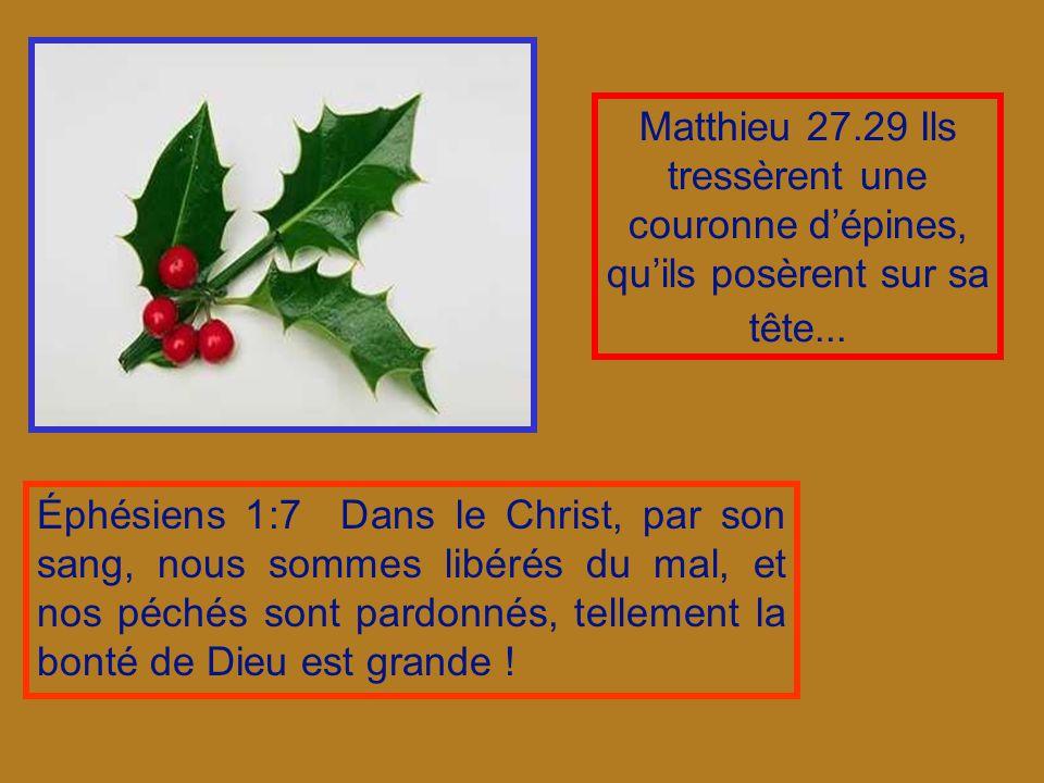 Matthieu 27.29 Ils tressèrent une couronne dépines, quils posèrent sur sa tête...