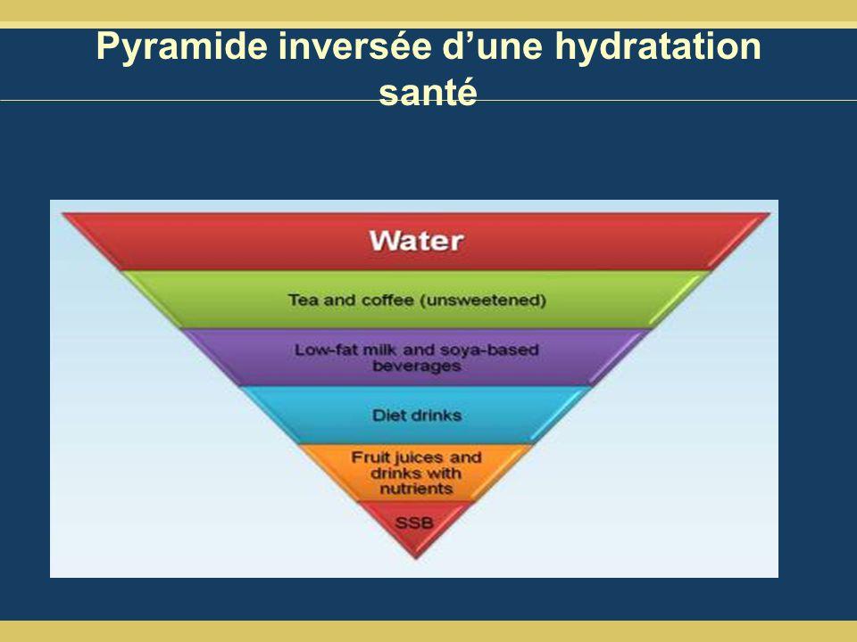 Pyramide inversée dune hydratation santé