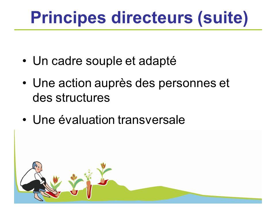 Un cadre souple et adapté Une action auprès des personnes et des structures Une évaluation transversale Principes directeurs (suite)