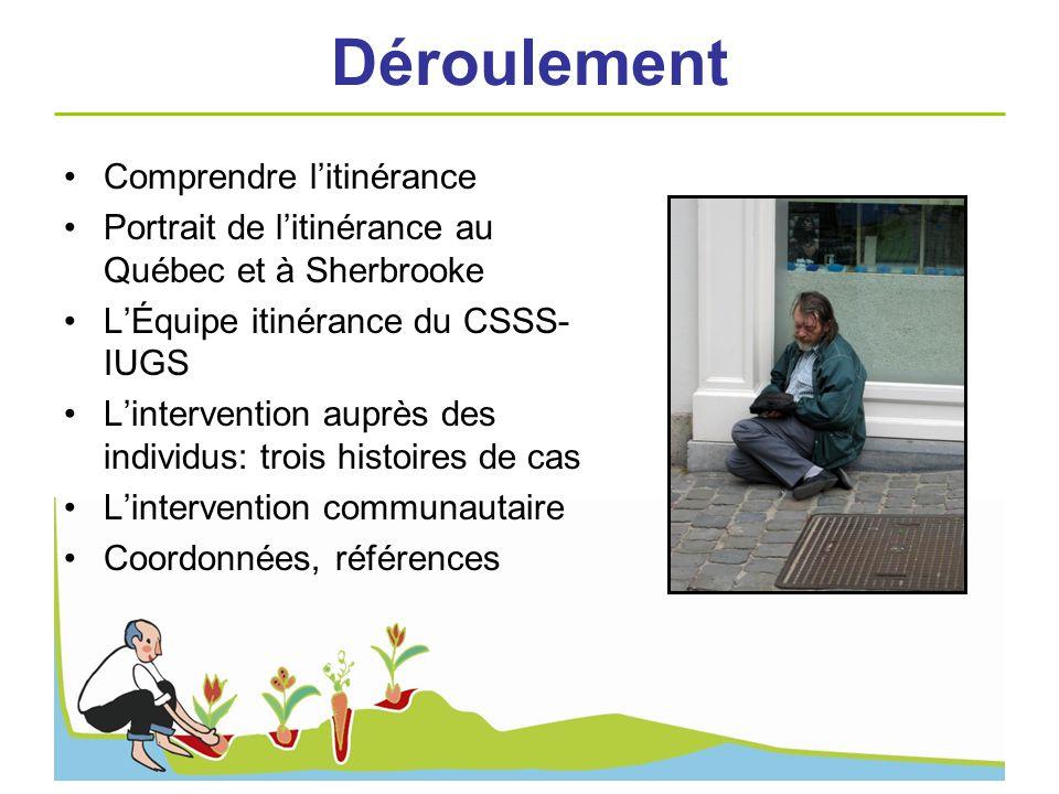 Déroulement Comprendre litinérance Portrait de litinérance au Québec et à Sherbrooke LÉquipe itinérance du CSSS- IUGS Lintervention auprès des individ