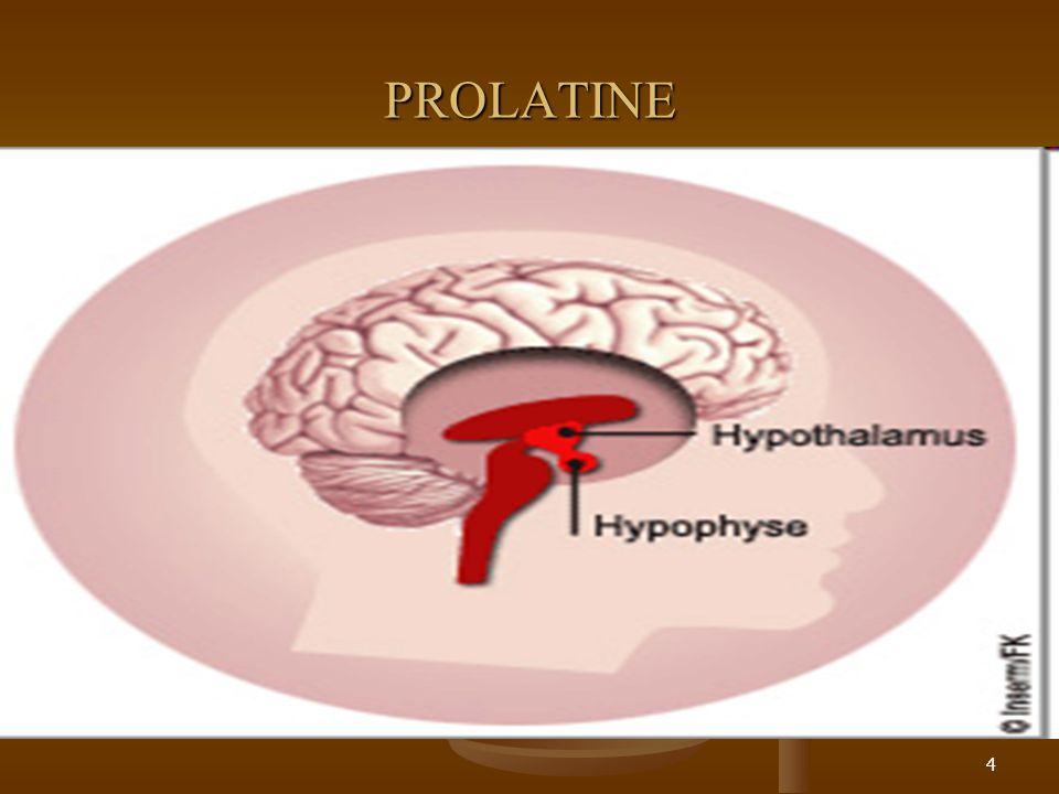 4 PROLATINE