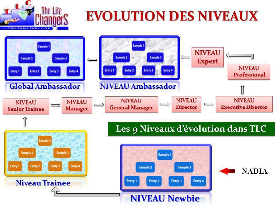 NIVEAU Newbie NADIA Niveau Trainee NIVEAU Senior Trainee NIVEAUManagerNIVEAUManager NIVEAU General Manager NIVEAU NIVEAUDirectorNIVEAUDirectorNIVEAU E
