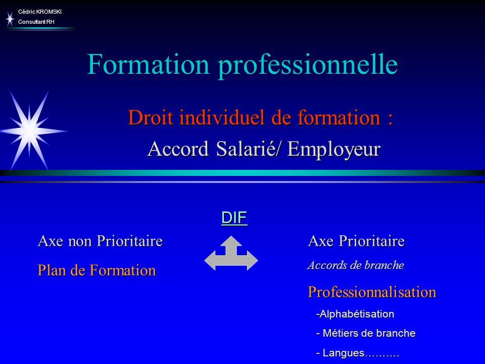 Cédric KROMSKI Consultant RH Formation professionnelle Axe non Prioritaire Plan de Formation Axe Prioritaire Accords de branche Professionnalisation D