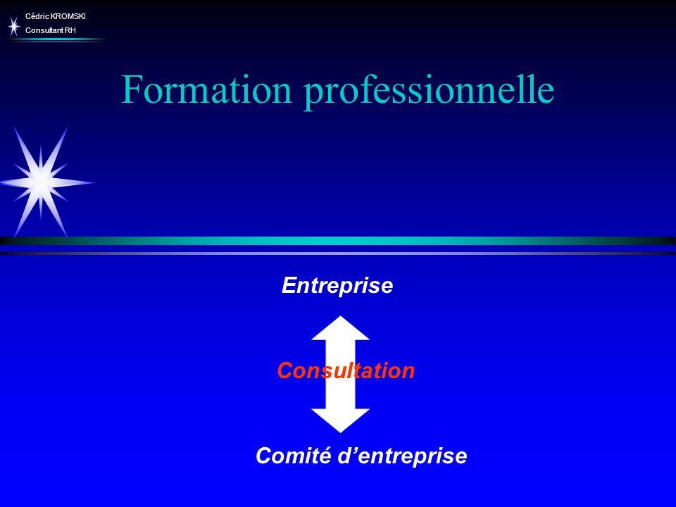 Cédric KROMSKI Consultant RH Formation professionnelle Comité dentreprise Entreprise Consultation