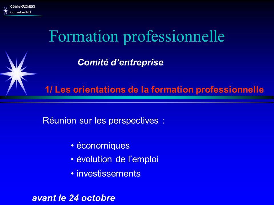 Cédric KROMSKI Consultant RH Formation professionnelle 1/ Les orientations de la formation professionnelle avant le 24 octobre Comité dentreprise évol