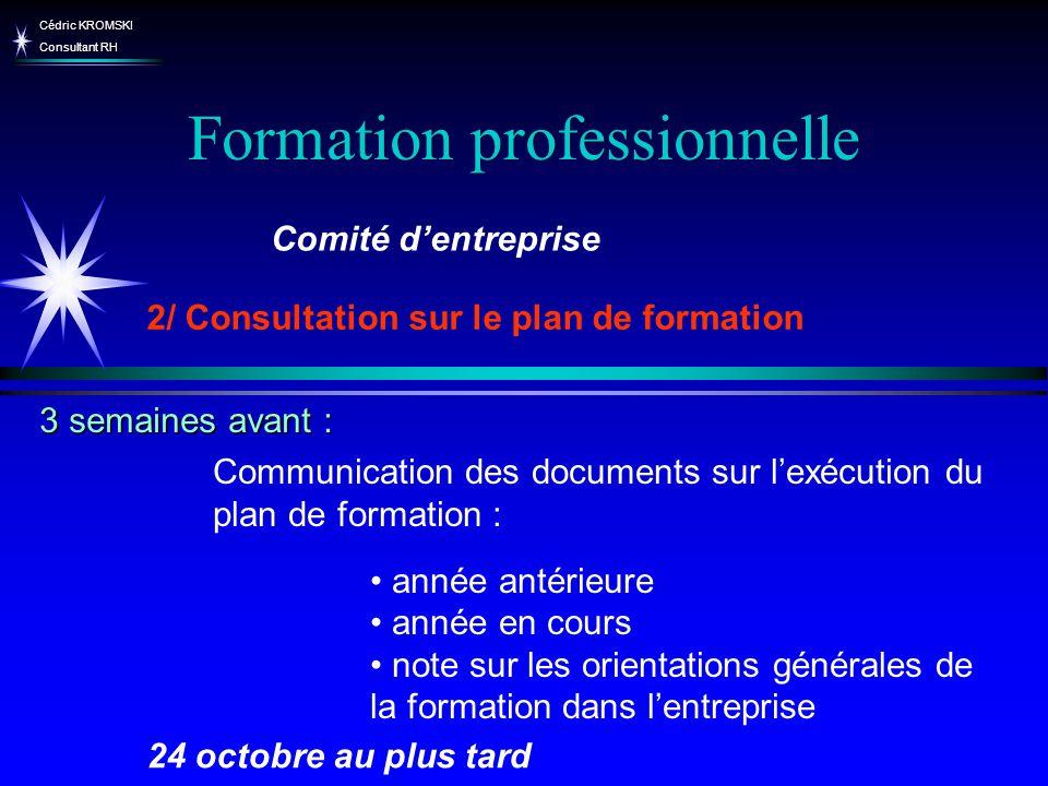 Cédric KROMSKI Consultant RH Formation professionnelle Communication des documents sur lexécution du plan de formation : année antérieure année en cou