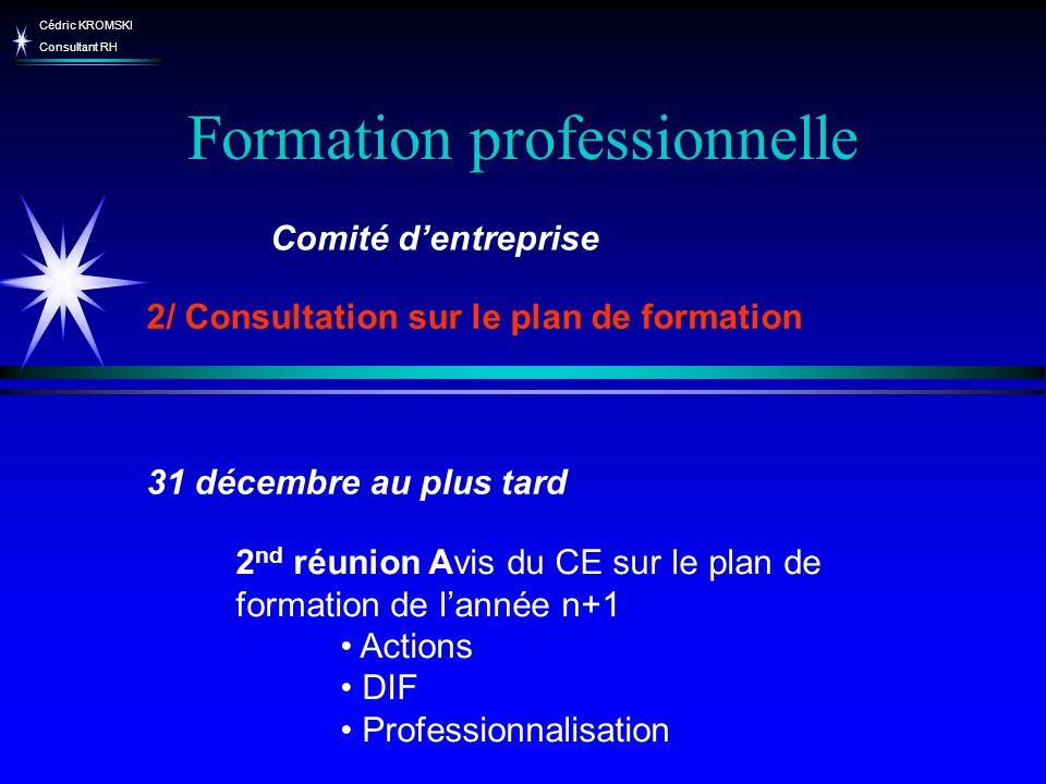 Cédric KROMSKI Consultant RH Formation professionnelle 2 nd réunion Avis du CE sur le plan de formation de lannée n+1 Actions DIF Professionnalisation