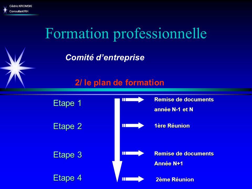 Cédric KROMSKI Consultant RH Formation professionnelle 2/ le plan de formation Comité dentreprise Remise de documents année N-1 et N Remise de documen