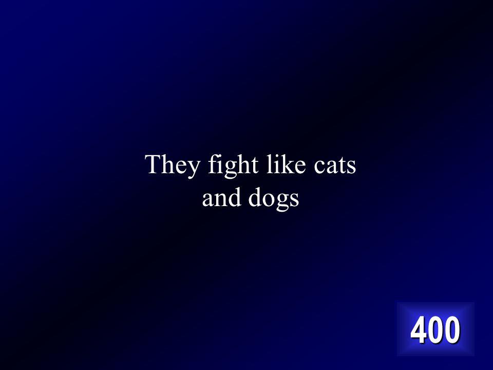 Answer… Cest ils sentendent comme chat et chien en anglais