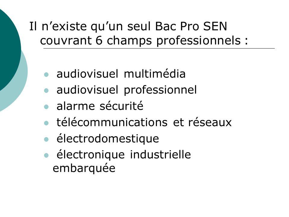 Il nexiste quun seul Bac Pro SEN couvrant 6 champs professionnels : audiovisuel multimédia audiovisuel professionnel alarme sécurité télécommunication