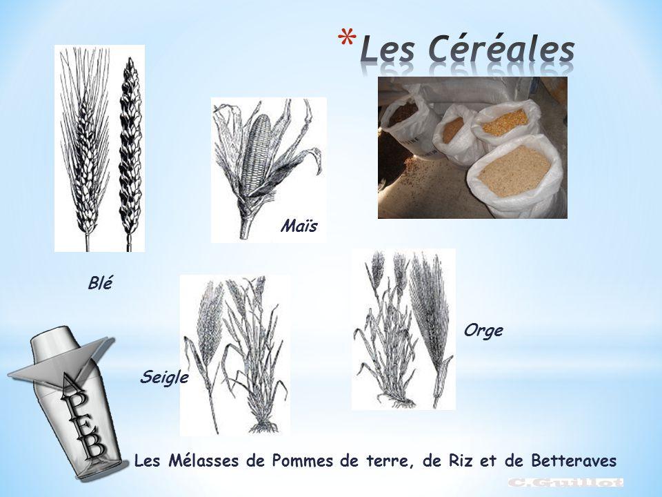 Blé Seigle Maïs Orge Les Mélasses de Pommes de terre, de Riz et de Betteraves
