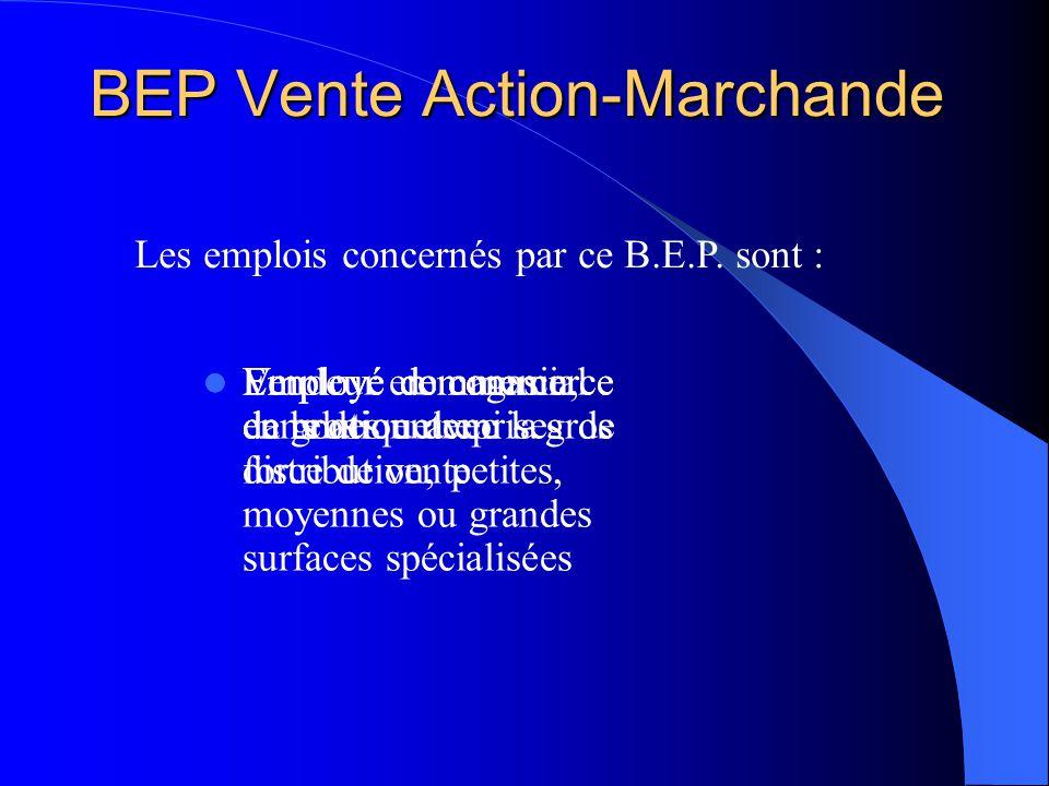 BEP Vente Action-Marchande Vendeur en magasin, en boutique Employé de commerce dans des entreprises de distribution, petites, moyennes ou grandes surf