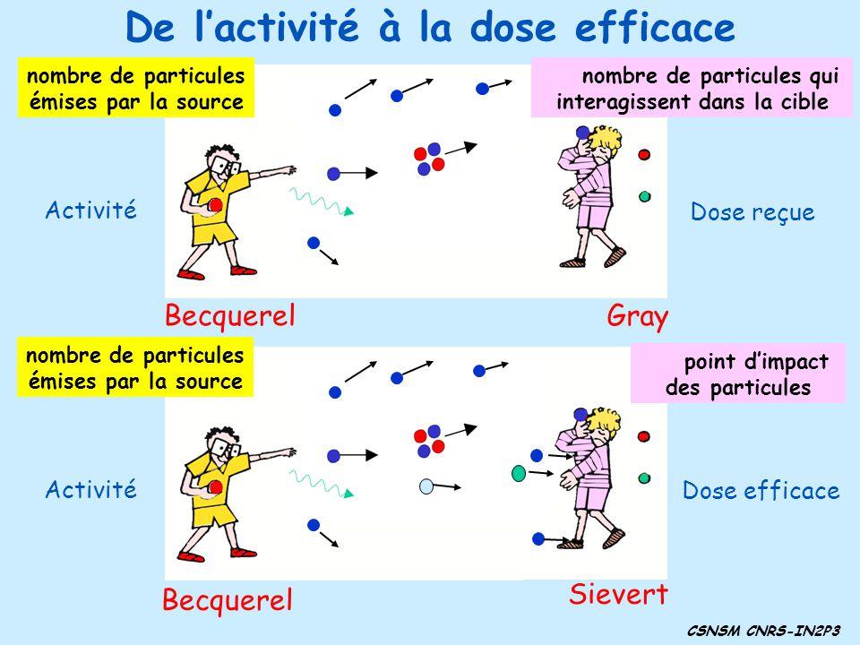 De lactivité à la dose efficace Becquerel nombre de particules émises par la source Gray nombre de particules qui interagissent dans la cible Dose reçue Activité nombre de particules émises par la source point dimpact des particules Sievert Dose efficace CSNSM CNRS-IN2P3