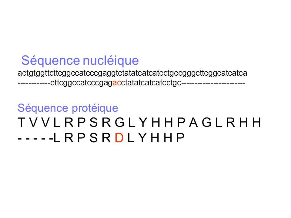 Séquence nucléique actgtggttcttcggccatcccgaggtctatatcatcatcctgccgggcttcggcatcatca ------------cttcggccatcccgagacctatatcatcatcctgc---------------------