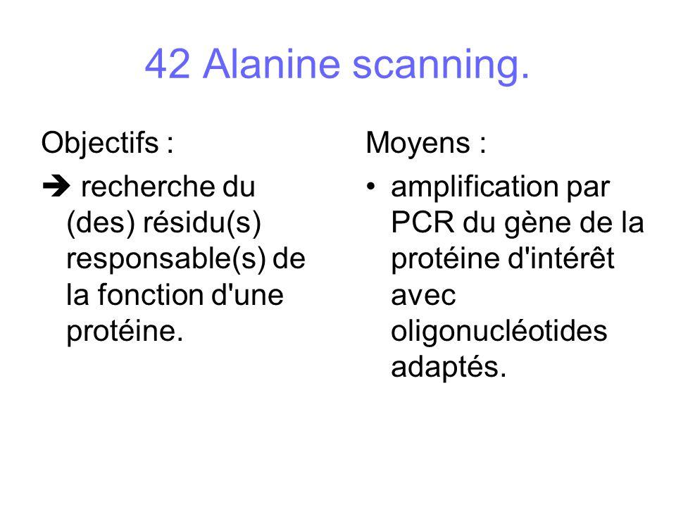 Objectifs : recherche du (des) résidu(s) responsable(s) de la fonction d'une protéine. Moyens : amplification par PCR du gène de la protéine d'intérêt