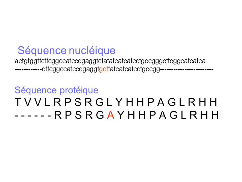 Séquence nucléique actgtggttcttcggccatcccgaggtctatatcatcatcctgccgggcttcggcatcatca ------------cttcggccatcccgaggtgcttatcatcatcctgccgg------------------