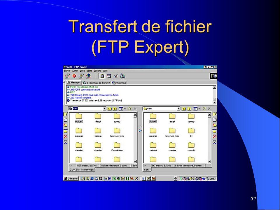 57 Transfert de fichier (FTP Expert)