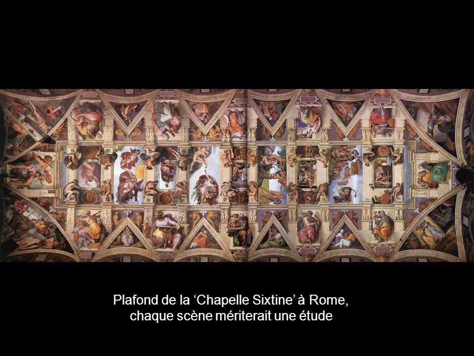 Michel Ange et Léonard de Vinci, sont les génies de la Renaissance. Le sculpteur Michel Ange a pratiqué tous les arts jusquà la perfection. La coupole