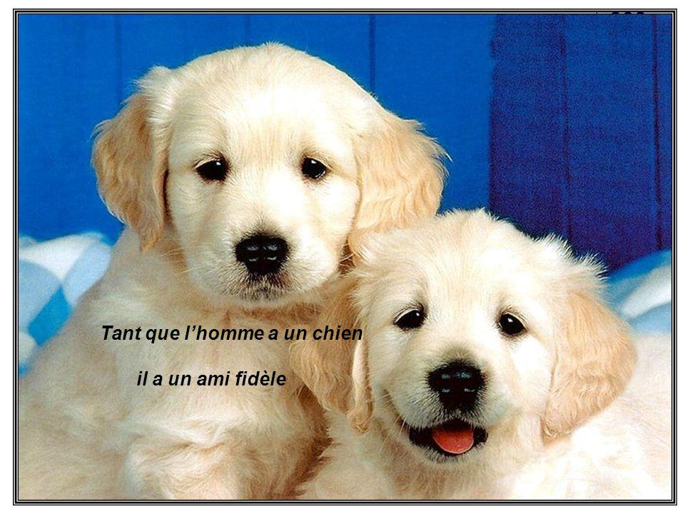 Tant que lhomme a un chien il a un ami fidèle