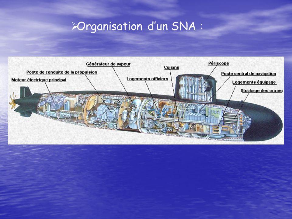 Organisation dun SNA :
