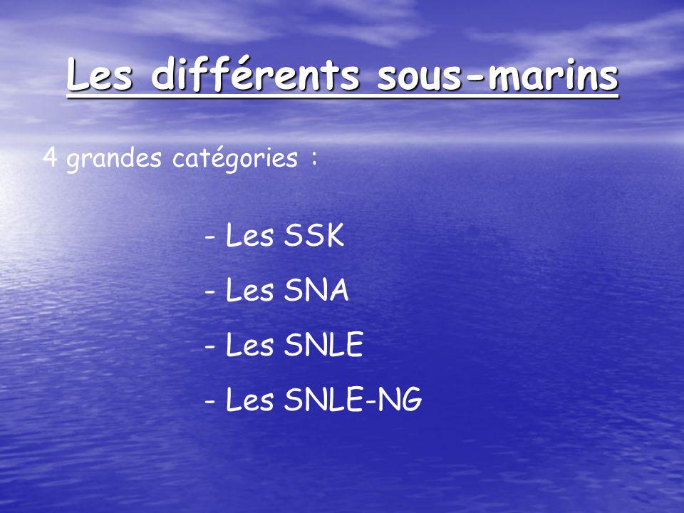 Organisation dun SNLE-NG :