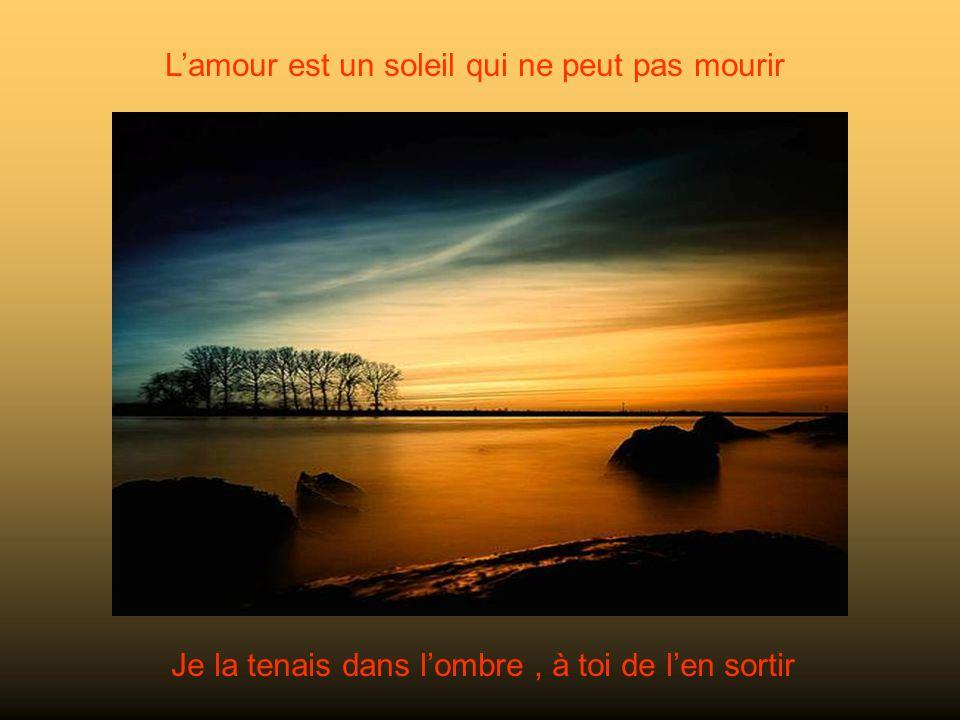 Lamour est un soleil qui ne peut pas mourir Je la tenais dans lombre, à toi de len sortir