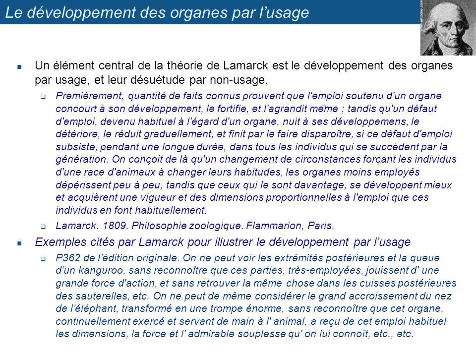 Le développement des organes par lusage Un élément central de la théorie de Lamarck est le développement des organes par usage, et leur désuétude par