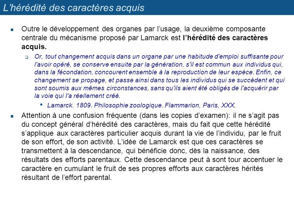 Lhérédité des caractères acquis Outre le développement des organes par lusage, la deuxième composante centrale du mécanisme proposé par Lamarck est lh