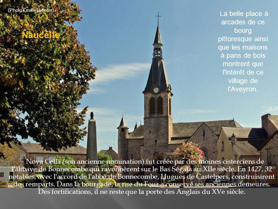 C e coin est un site classé qui comporte notamment un donjon du XIVe siècle et une église avec une croix du XVIIe siècle : le village comporte aussi une halle classée ainsi qu une basilique gothique Notre Dame de Ceignac des XVe et XVIe siècles.
