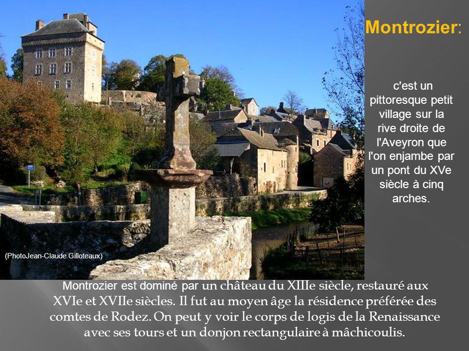 Entre Rodez et Millau, Salles Curan se situe sur le plateau du Lévézou, plateau formé de roches cristallines, d une altitude moyenne de 800 mètres dominé par le Puech del Pal.