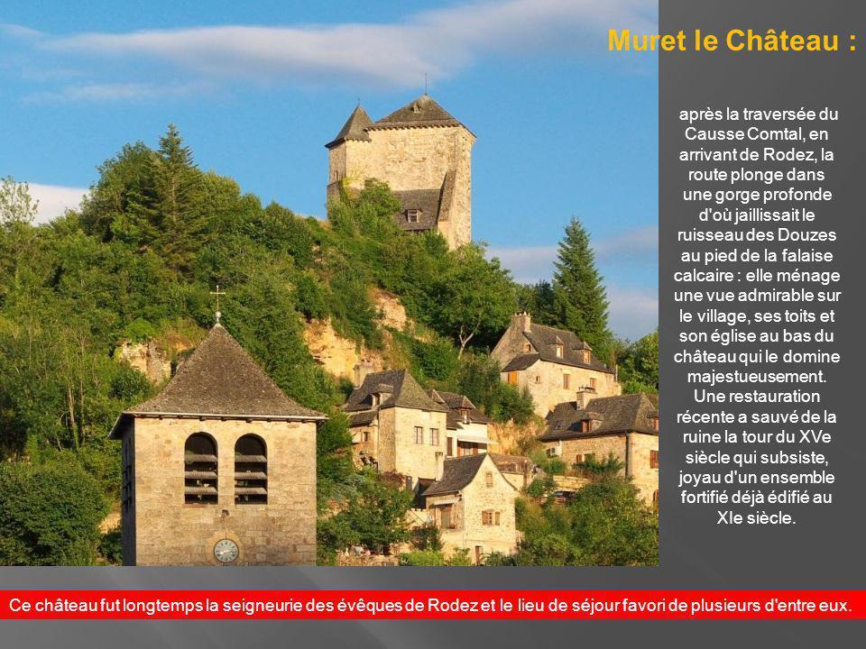 Montrozier est dominé par un château du XIIIe siècle, restauré aux XVIe et XVIIe siècles.