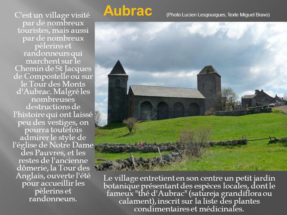 L e site abrite un village médiéval perché et très fleuri.