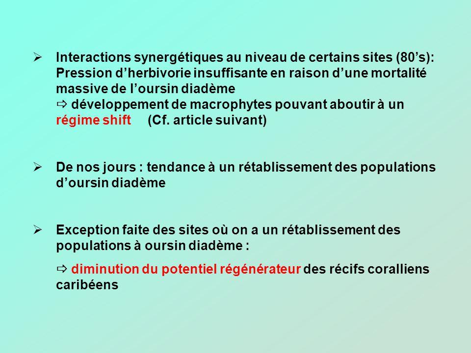 Interactions synergétiques au niveau de certains sites (80s): Pression dherbivorie insuffisante en raison dune mortalité massive de loursin diadème dé