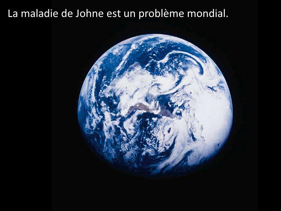 La maladie de Johne est un problème mondial.