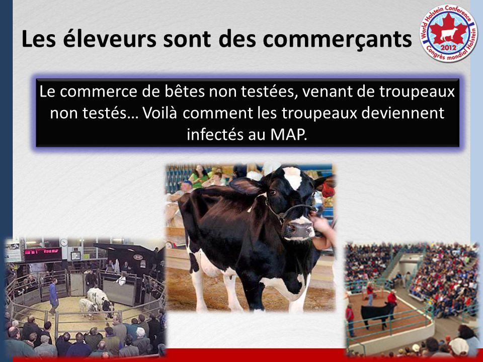 Les éleveurs sont des commerçants Le commerce de bêtes non testées, venant de troupeaux non testés… Voilà comment les troupeaux deviennent infectés au MAP.
