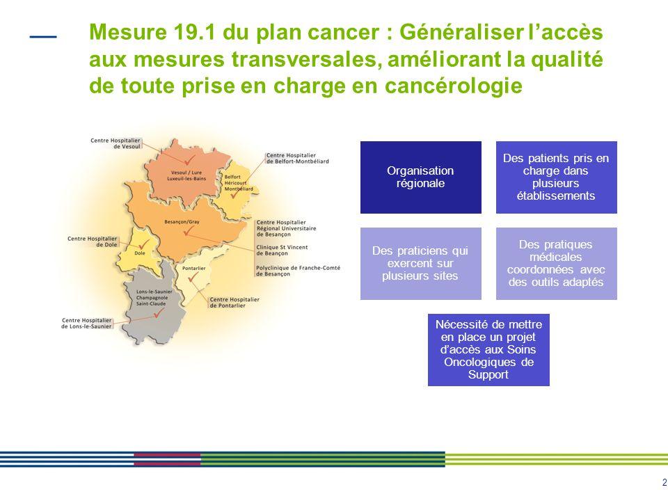 2 Mesure 19.1 du plan cancer : Généraliser laccès aux mesures transversales, améliorant la qualité de toute prise en charge en cancérologie Organisati
