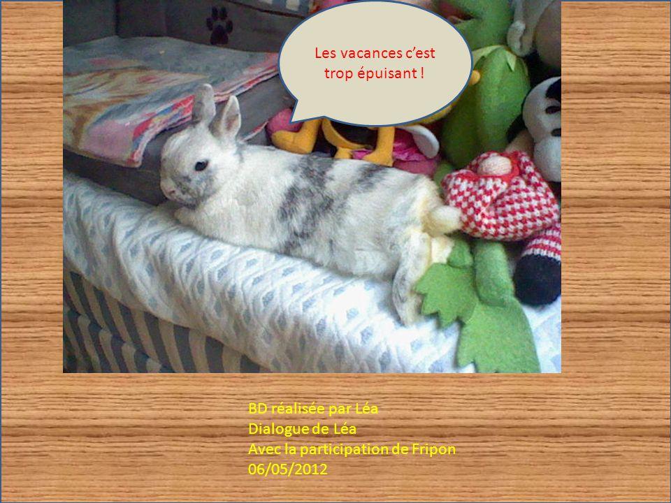 BD réalisée par Léa Dialogue de Léa Avec la participation de Fripon 06/05/2012 Les vacances cest trop épuisant !