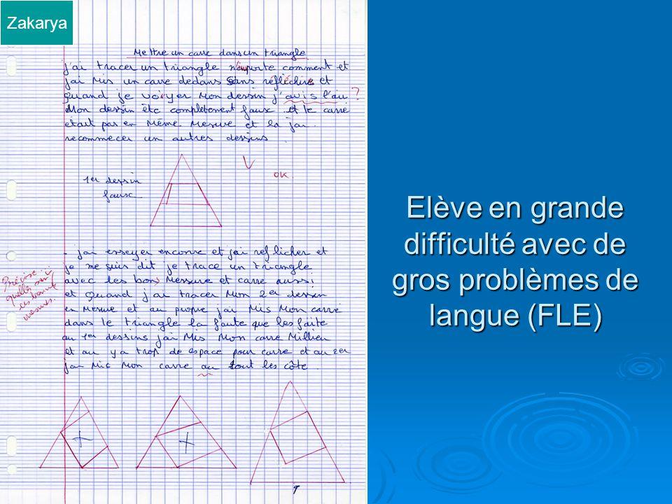Elève en grande difficulté avec de gros problèmes de langue (FLE) Zakarya