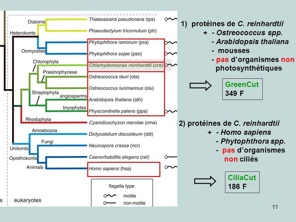 11 GreenCut 349 F 2) protéines de C. reinhardtii + - Homo sapiens - Phytophthora spp. - pas dorganismes non ciliés CiliaCut 186 F 1) protéines de C. r