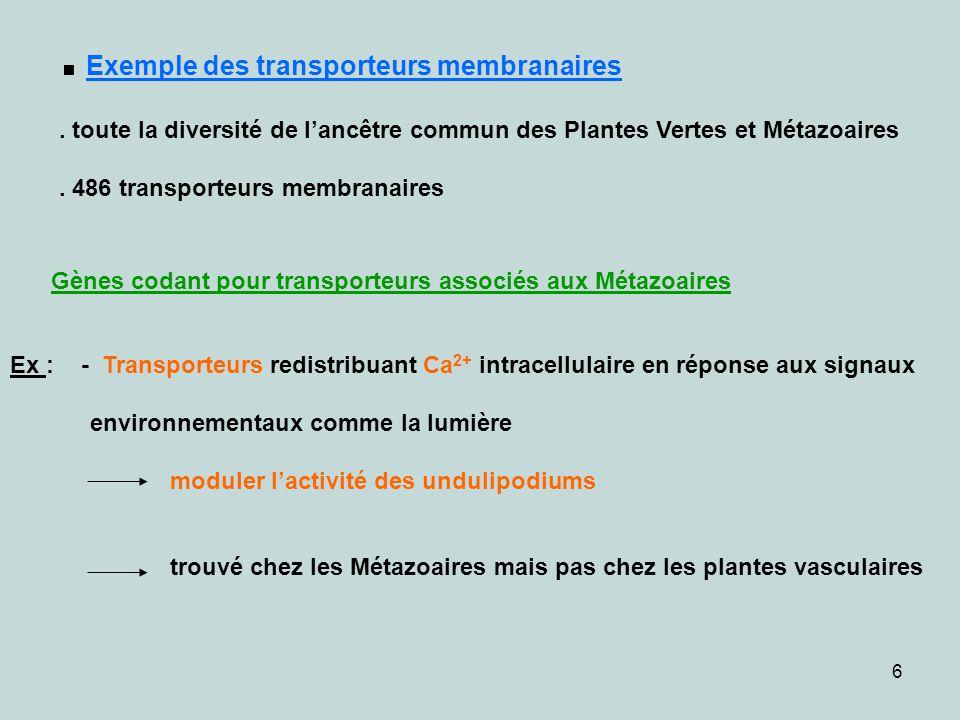 6. Exemple des transporteurs membranaires. toute la diversité de lancêtre commun des Plantes Vertes et Métazoaires. 486 transporteurs membranaires Gèn