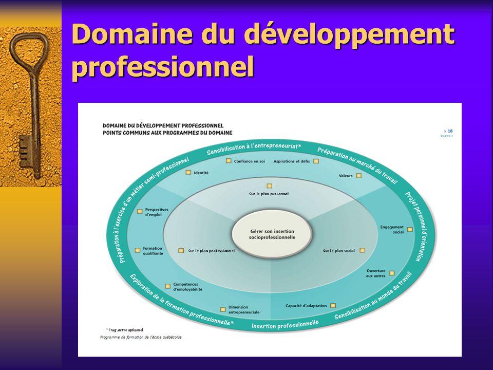 Domaine du développement professionnel