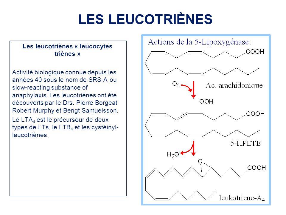 Les leucotriènes « leucocytes triènes » Activité biologique connue depuis les années 40 sous le nom de SRS-A ou slow-reacting substance of anaphylaxis