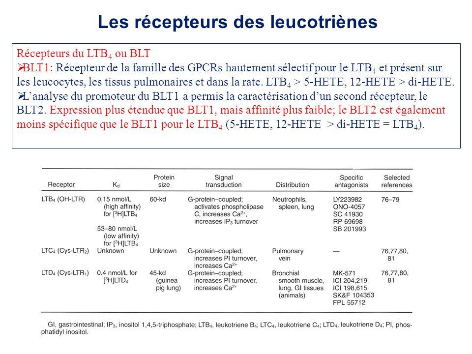 Récepteurs du LTB 4 ou BLT BLT1: Récepteur de la famille des GPCRs hautement sélectif pour le LTB 4 et présent sur les leucocytes, les tissus pulmonai