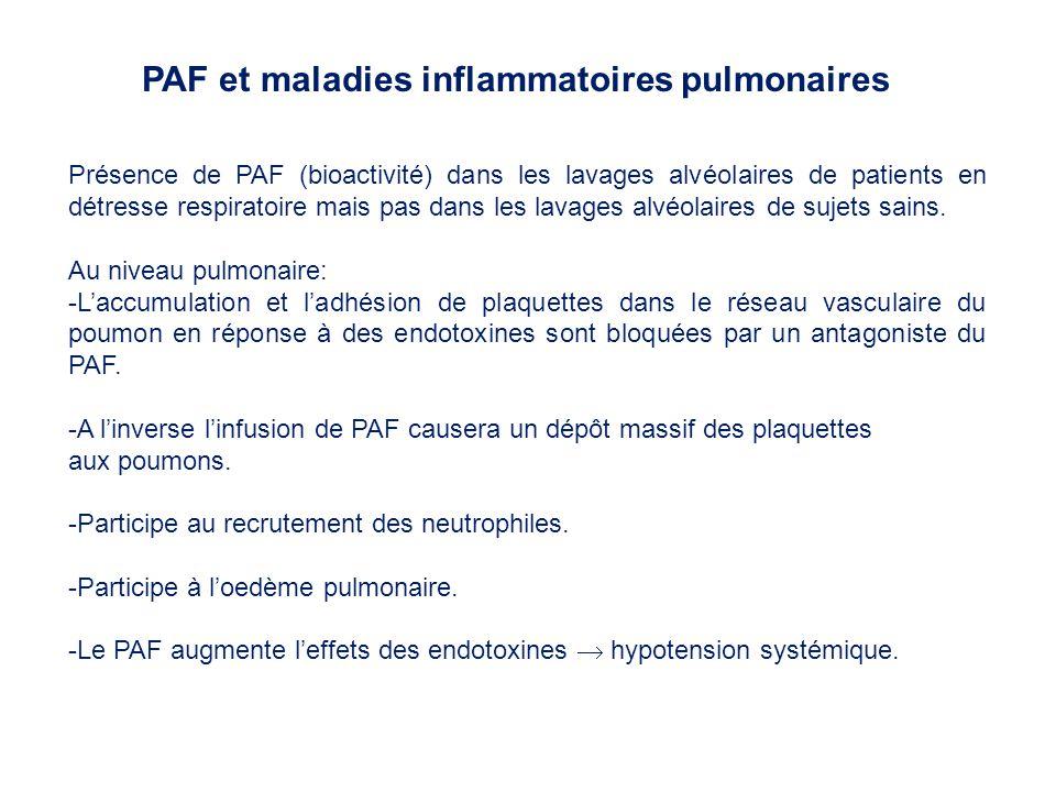 Présence de PAF (bioactivité) dans les lavages alvéolaires de patients en détresse respiratoire mais pas dans les lavages alvéolaires de sujets sains.