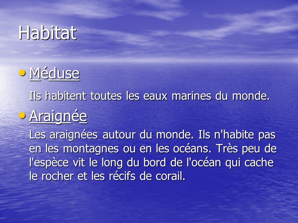 Habitat Méduse Méduse Ils habitent toutes les eaux marines du monde. Araignée Araignée Les araignées autour du monde. Ils n'habite pas en les montagne