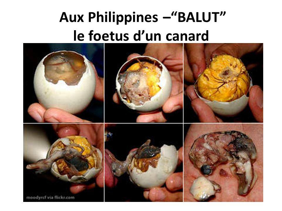 Aux Philippines –BALUT le foetus dun canard